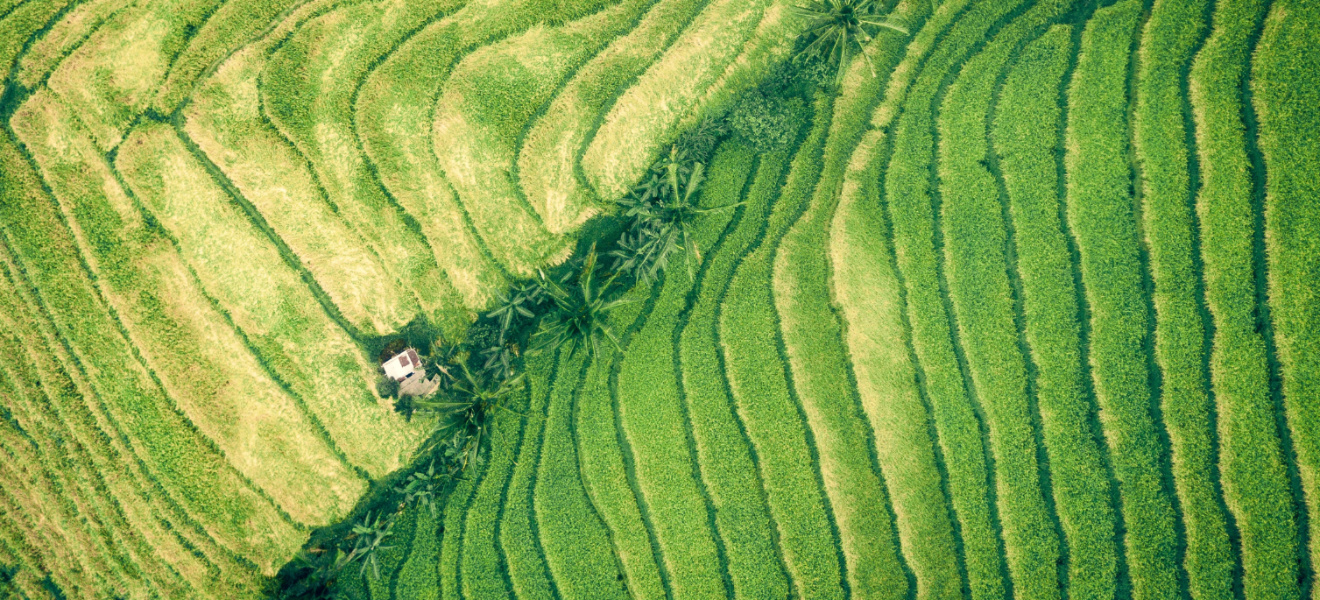 Food System Vision Prize: Building a Resilient Food Future